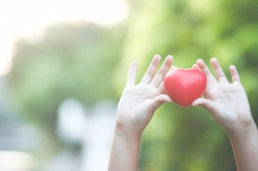 Hoteles cardioprotegidos